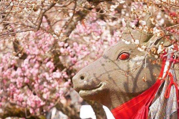 北野天滿宮牛雕像