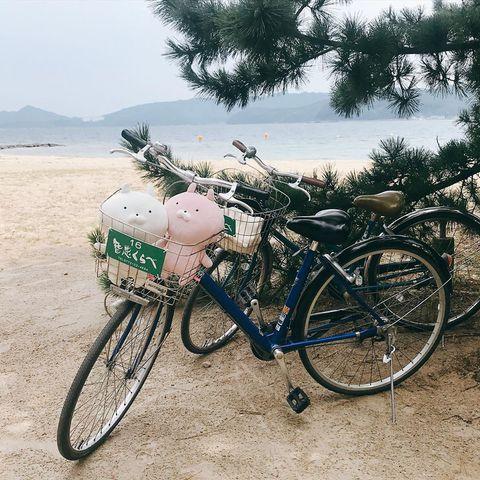 天橋立租借腳踏車