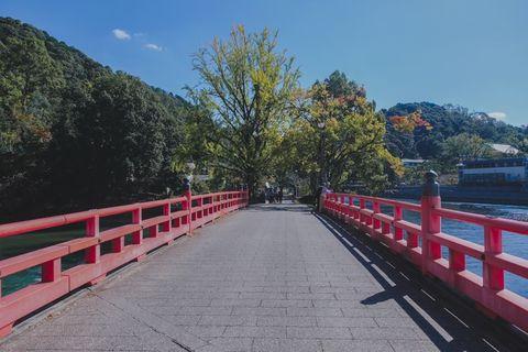 宇治朝霧橋