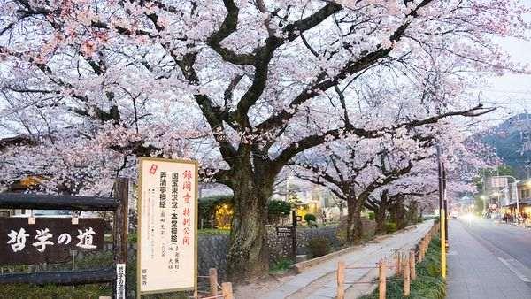 京都行程規劃哲學之道
