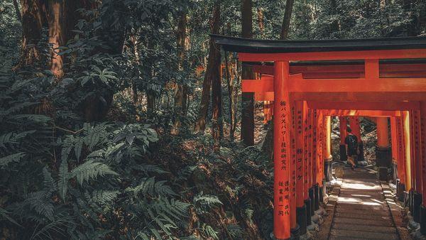 京都留學必做的幾件事