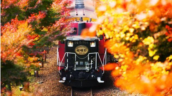 京都賞楓景點嵐山小火車
